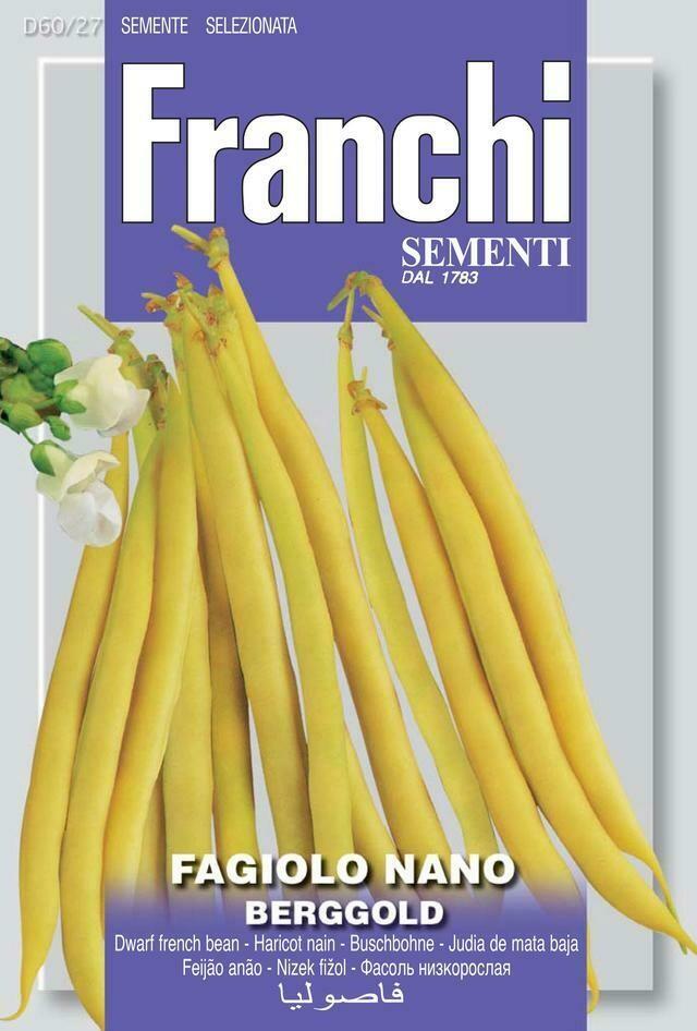 Bean Dwarf Berggold (Phaseolus vulgaris L.) (Bag) - Franchi Sementi