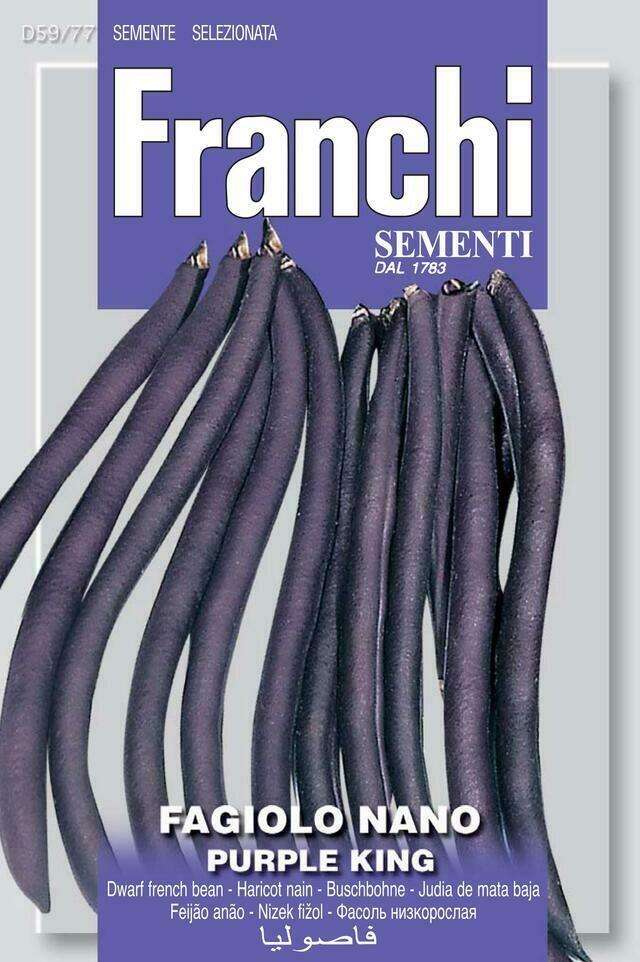 Bean Dwarf Purple King (Phaseolus vulgaris L.) (Bag) - Franchi Sementi