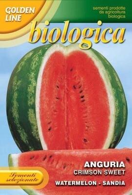 Watermelon Crimson Sweet (Citrullus lanatus Thunb.) (Bag) - Franchi Sementi