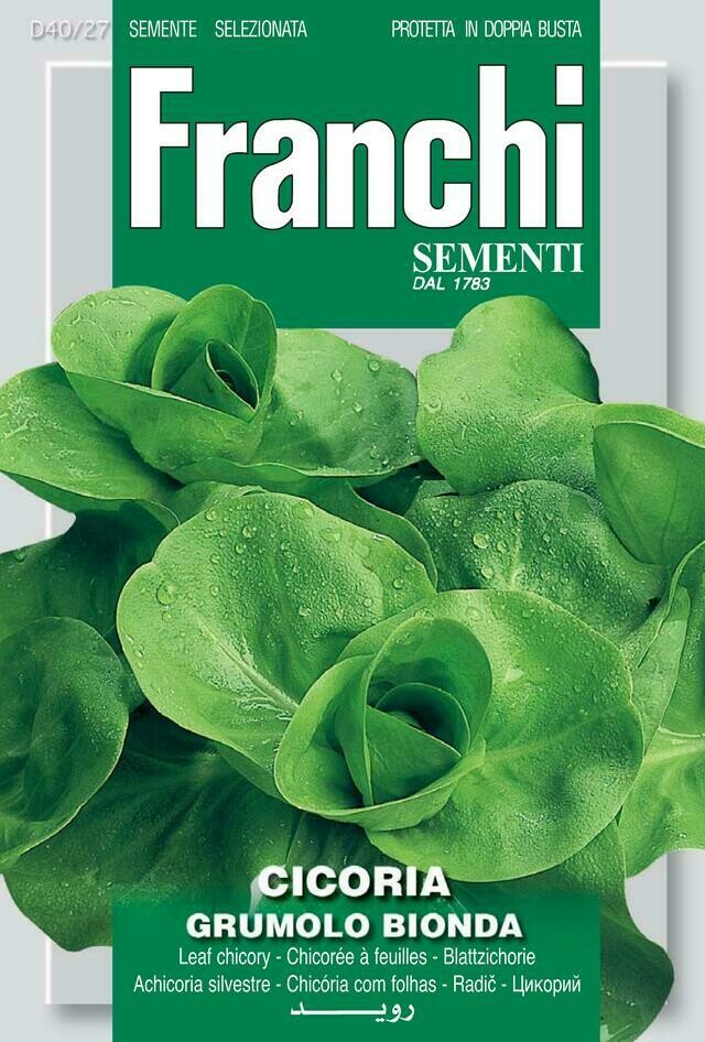 Chicory Grumolo Bionda (Bag) - Franchi Sementi