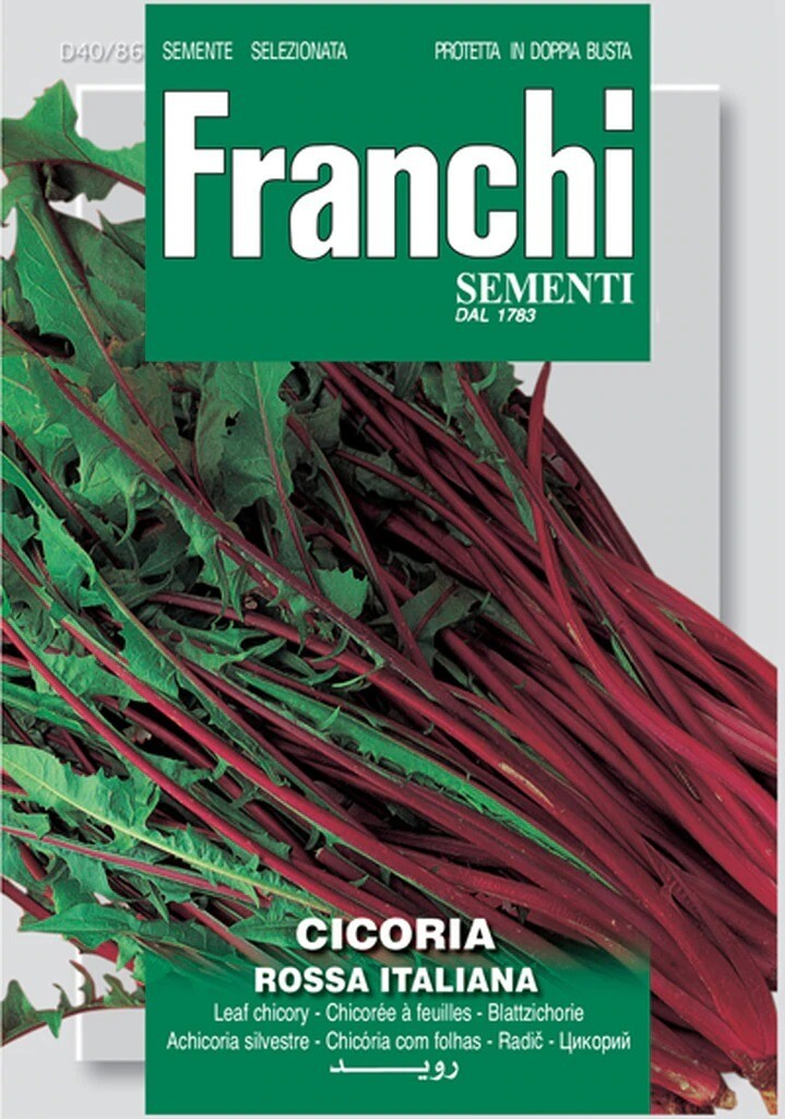 Chicory Red Stem (Bag) - Franchi Sementi