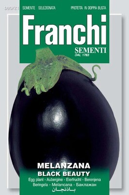 Eggplant Black Beauty F1 (Bag) - Franchi Sementi