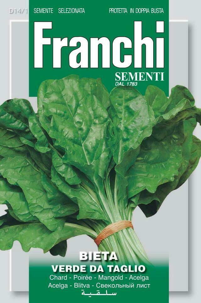 Chard Costa Verde Aka 'Perpetual Spinach' or Spinach Beet (Bag) - Franchi Sementi