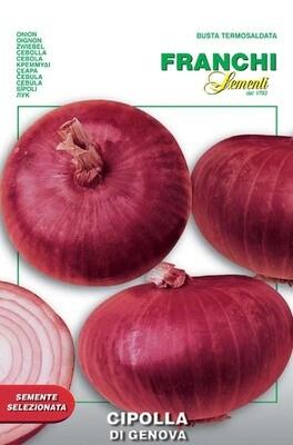 Onion Red Of Genova (Allium cepa L.) (Bag) - Franchi Sementi