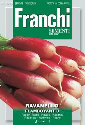 Radish Flamboyant (Raphanus sativus L.) (Bag) - Franchi Sementi