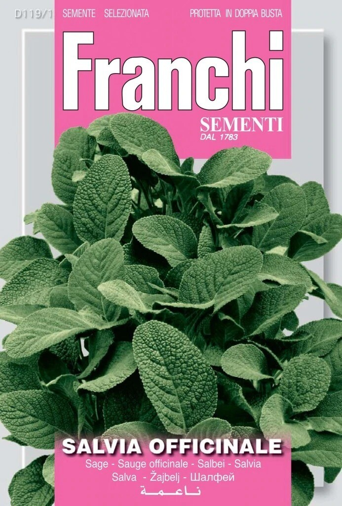Sage (Salvia Officinale) (Bag) - Franchi Sementi