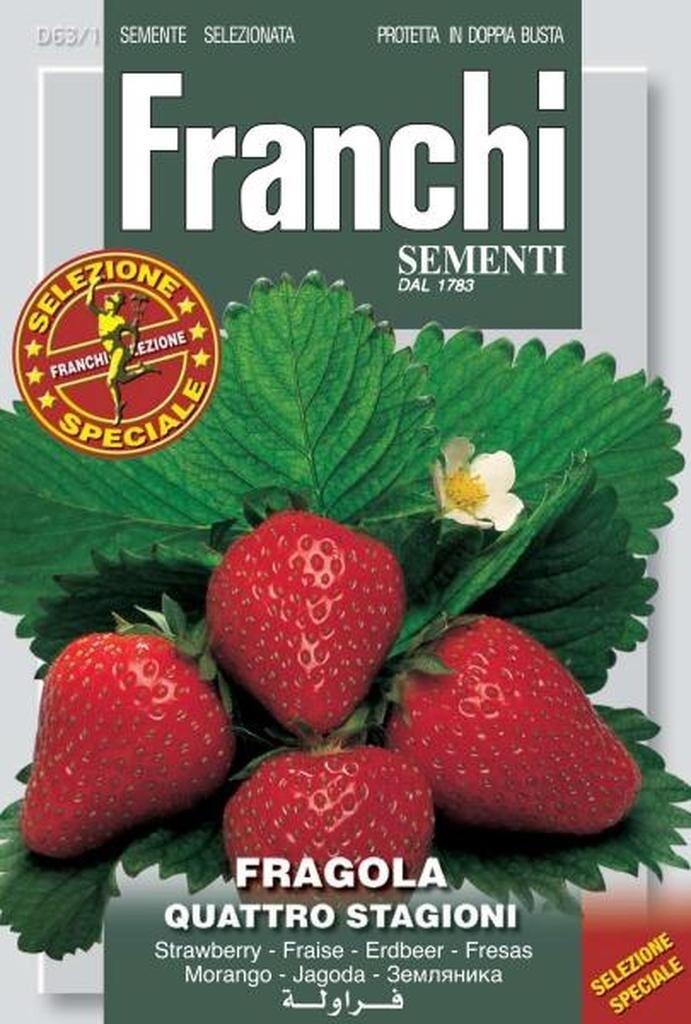 Strawberry Alpine (Fragaria Vesca L.) (Bag) - Franchi Sementi