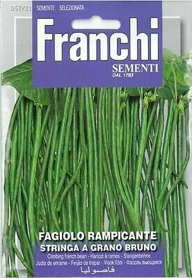 Bean Climbing Stringa (Vigna sesquipedalis L.) (Bag) - Franchi Sementi