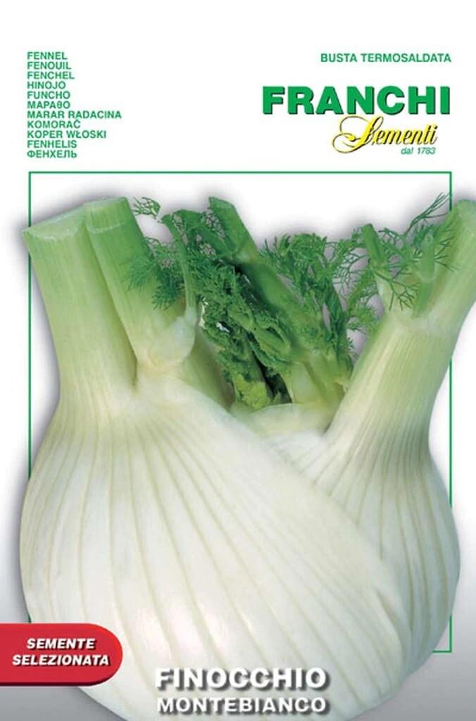 Fennel Finocchio Montebianco (Bag) - Franchi Sementi