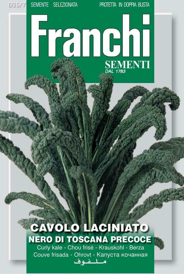 Kale Cavolo Nero Of Tuscany (Bag) - Franchi Sementi