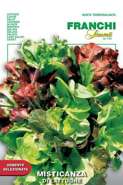 Lettuce Four Seasons Mesclun (Bag) - Franchi Sementi