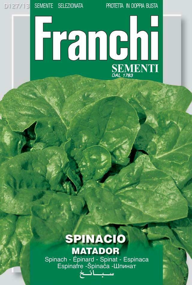 Spinach 'Matador' (Bag) - Franchi Sementi