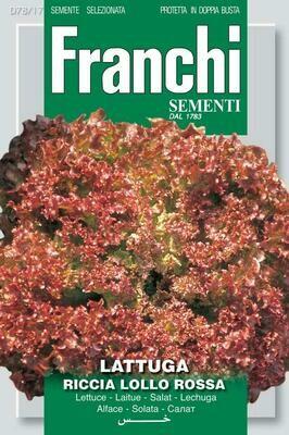 Lettuce Lollo Rossa (Lactuca sativa L.) (Bag) - Franchi Sementi