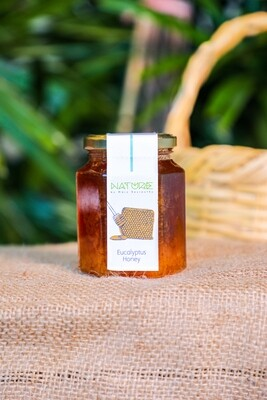 Eucalyptus Honey عسل الكينا (Jar) - Nature by Marc Beyrouthy