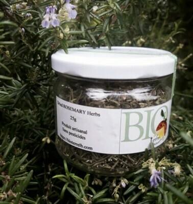 Rosemary (Jar) - BioTerre