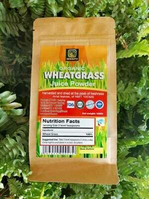 Wheatgrass Juice Powder (Bag) - Herbaty