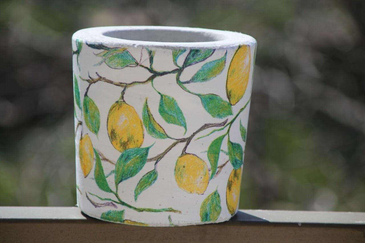 Concrete Lemon (Pot) - Coup de Glue
