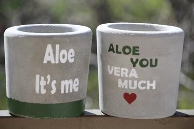 Concrete Aloe Vera (Pot) - Coup de Glue