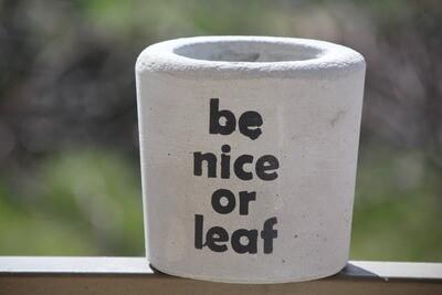 Concrete Leaf (Pot) - Coup de Glue