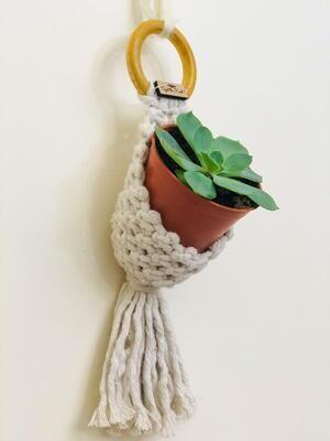 Macrame Hanger Pod Lilas White (Piece) - Spot the Knot