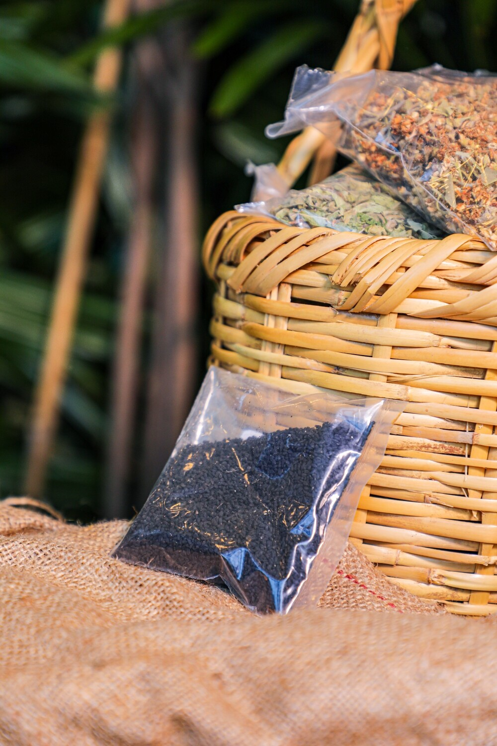 Black Seeds (Nigella sativa) (Bag) - Nature by Marc Beyrouthy