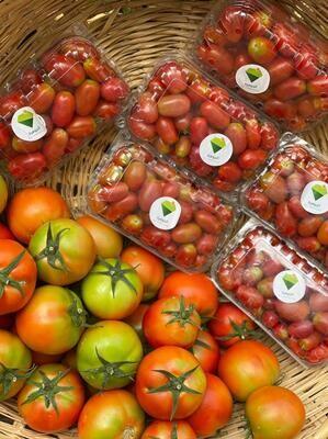 Tomato Cherry (Box) - Al Jawhara