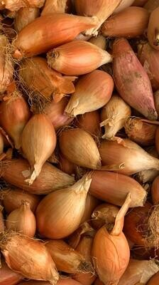 Onion Mix Brown (Kg) - Made by Nature