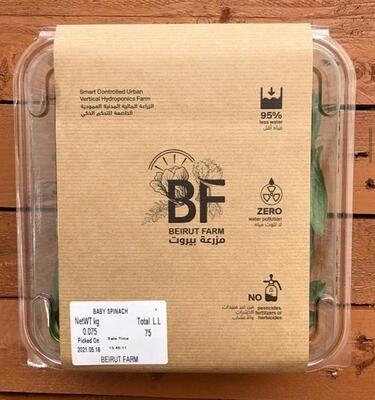 Baby Spinach (Box) - Beirut Farm