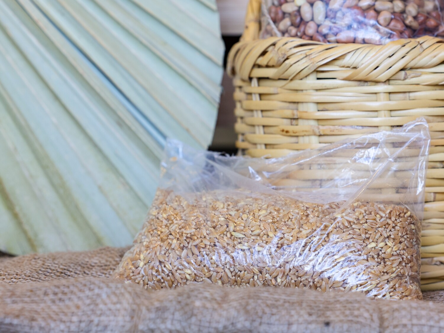 Wheat Grains (Bag) - Nature by Marc Beyrouthy