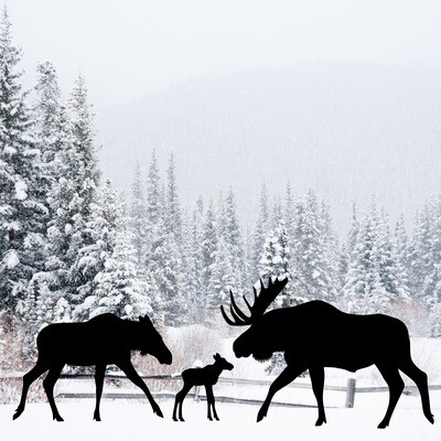 Moose Family Silhouettes