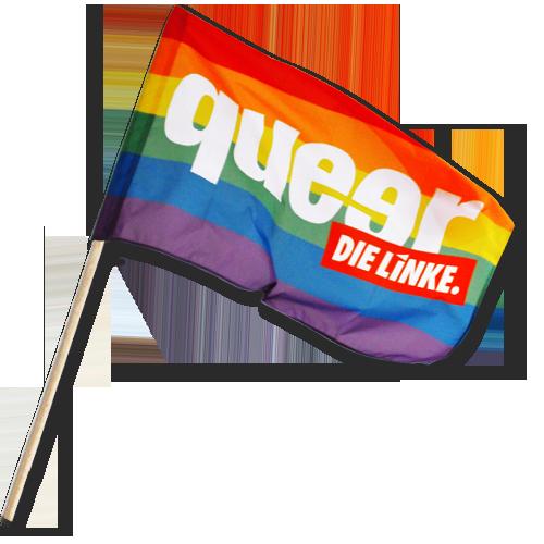"""Schwenkfahne """"queer"""" klein"""
