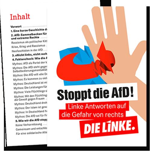 """Broschüre """"Stoppt die AfD"""""""