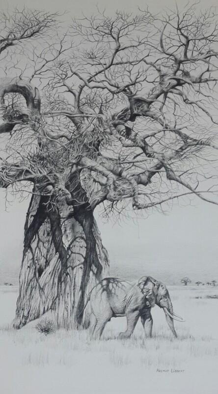 Elephant & Baobab Grace