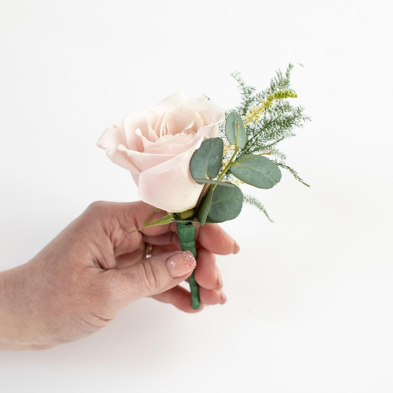 Blush rose boutonnière
