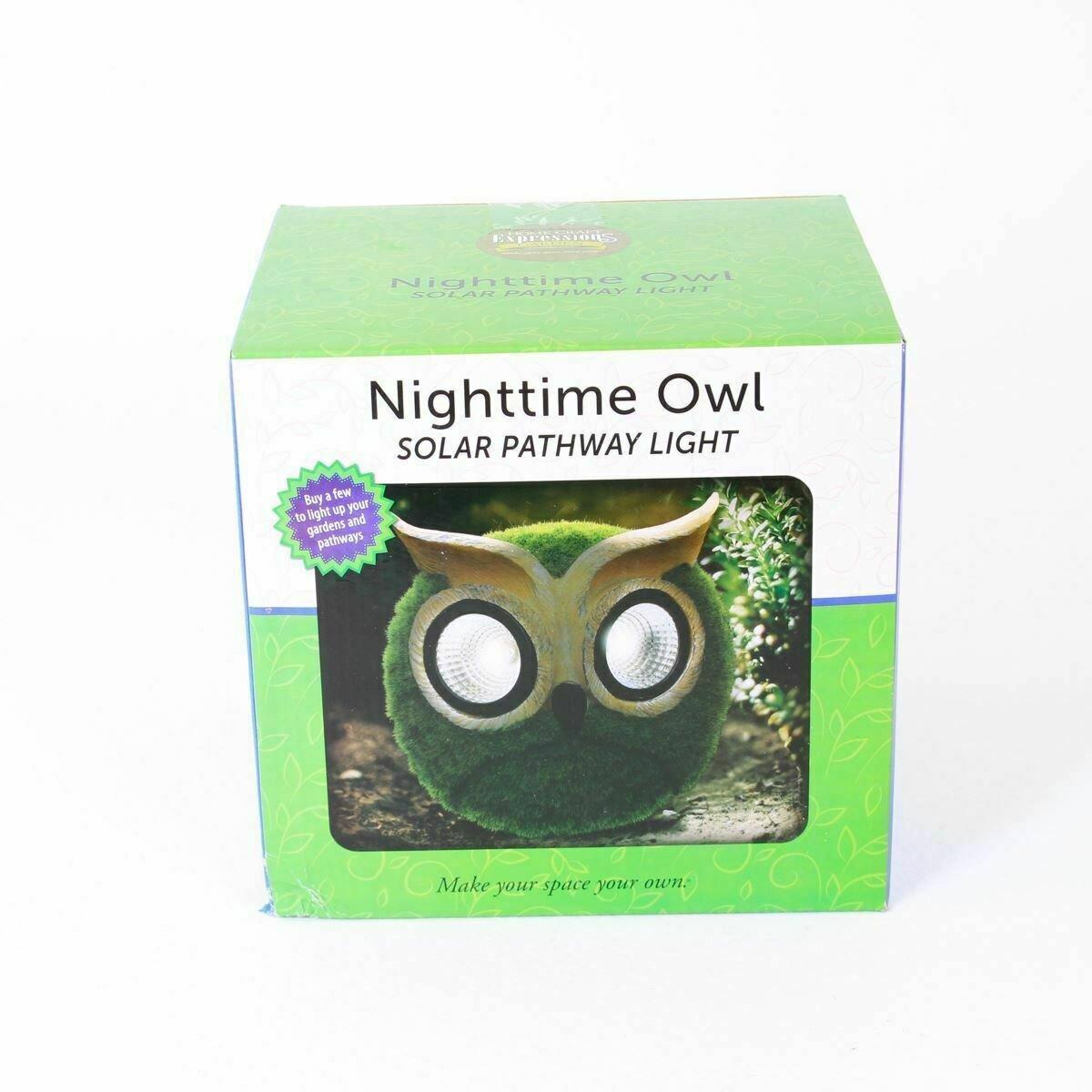 Nighttime Owl Solar Pathway Light
