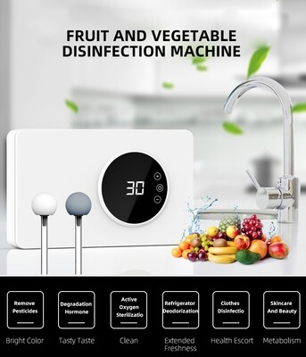 BEC 400 FRUIT AND VEG DISINFECTION MACHINE