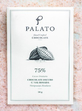 Barra 75% Chocolate Oscuro con Sal (PALATO)