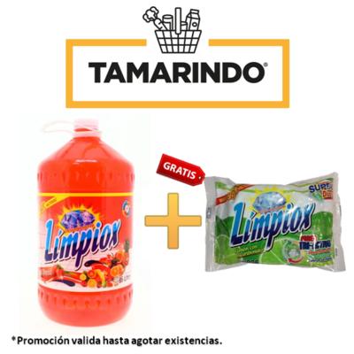 Promoción Desinfectante Limpiox Tutifruti  Bote 5 litros + 1 súper disco lavaplatos Límpiox 225g GRATIS