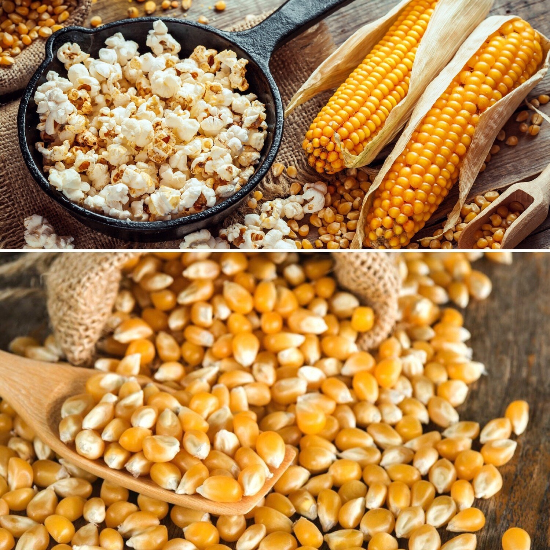 Popping Corn RAW 2 Kg