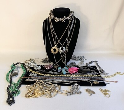 Jewelry Grab Bag of Necklaces.
