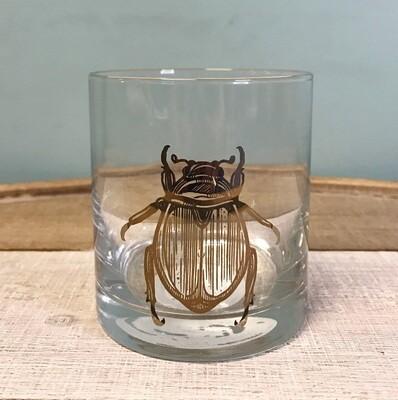 Glass Rocks Beetle