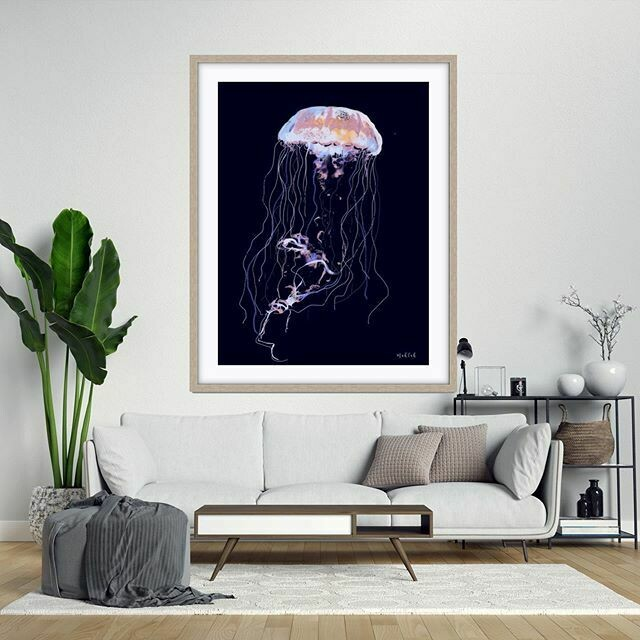 Jelly Fish  Print