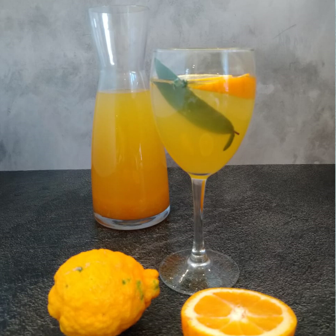 Orange and Lemon cordial 500ml