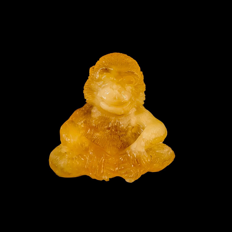 Małpa z bursztynu bałtyckiego