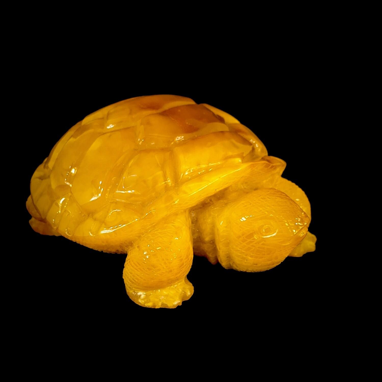 Żółw z bursztynu bałtyckiego