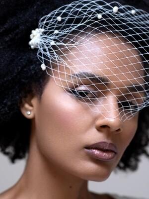 Birdcage wedding veil ROSE
