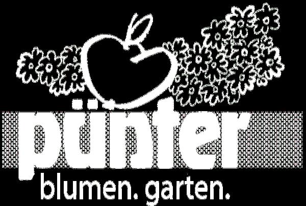 Online Shop Pünter Blumen und Garten