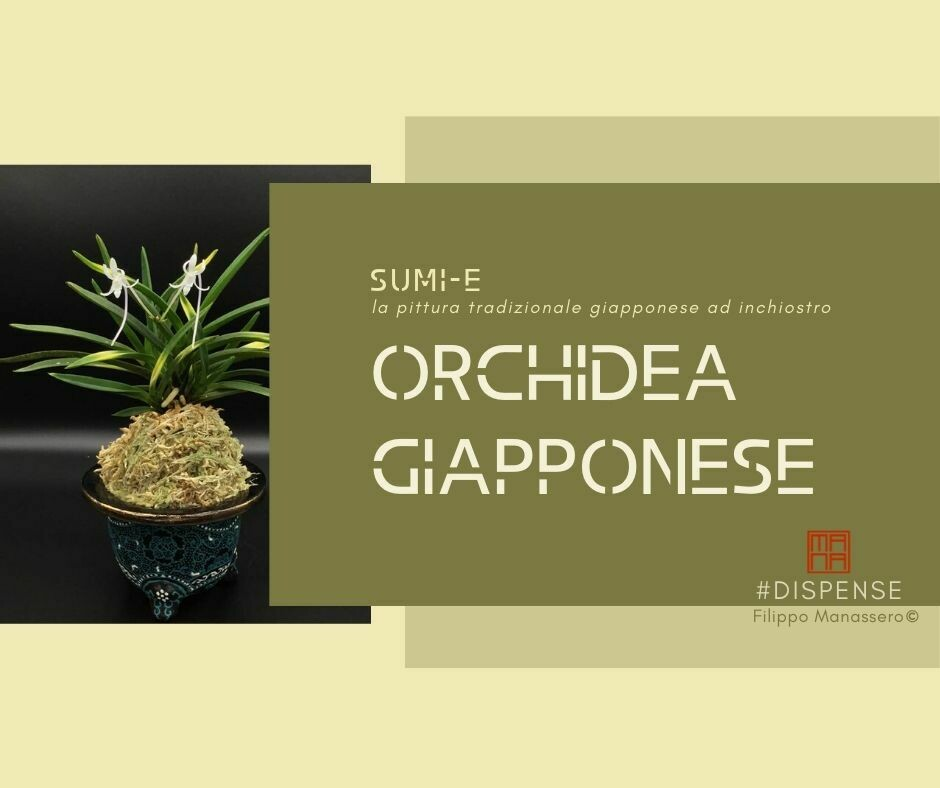 23 e 24 GENNAIO Sumi-e Experience on-line:  l'orchidea giapponese