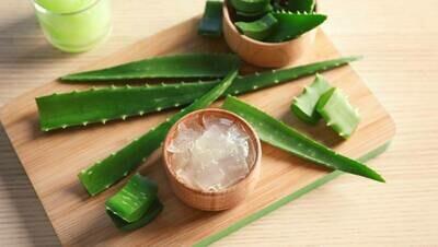 100ml Aloe gel