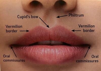 0.5ml Lip Filler Voucher